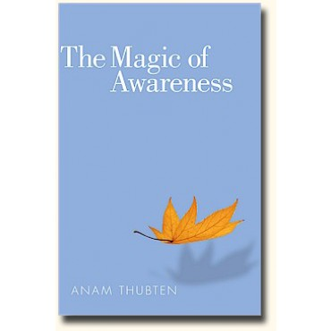 The magic of awareness cover