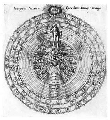 anima-mundi-illustration.jpg