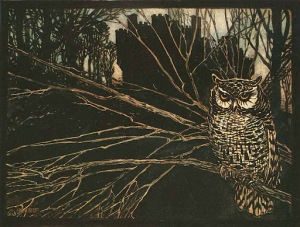 The witch as an owl by Arthur Rackham