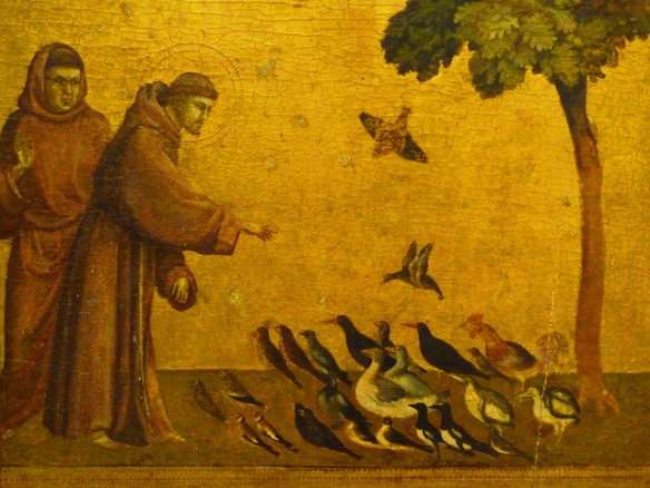 Saint Francis and the birds, by Giotto.  CC BY-NC-ND 2.0