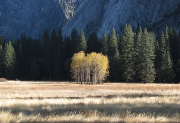 Yosemite Valley, November 2013