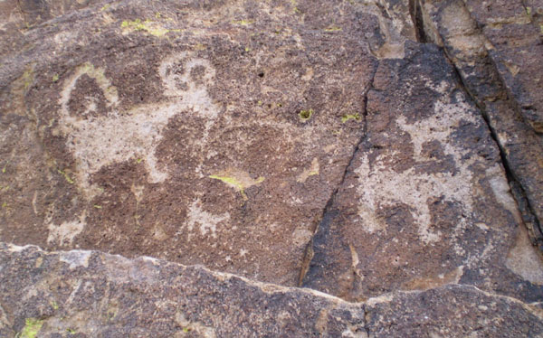 Petroglyphs, Saguaro National Park, Arizona